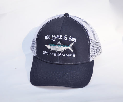 Ball Cap -  Structured Tarpon Coordinate on Blue/White Mesh