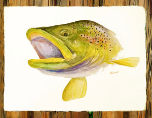 Original watercolor - Brook Trout