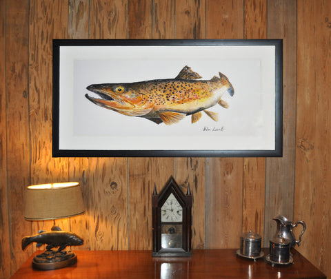 Giclee Brown Trout