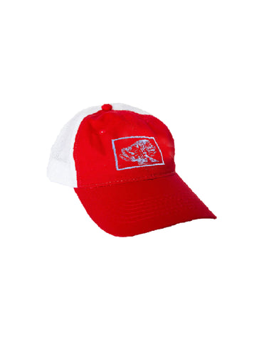 Ball Cap - Silver King on Red/White Mesh