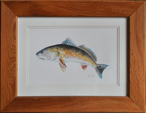 Original - Redfish