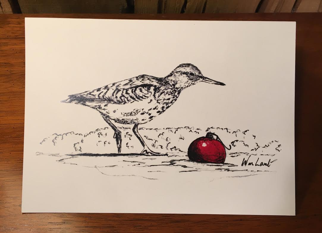 Notecards - Christmas Sandpiper