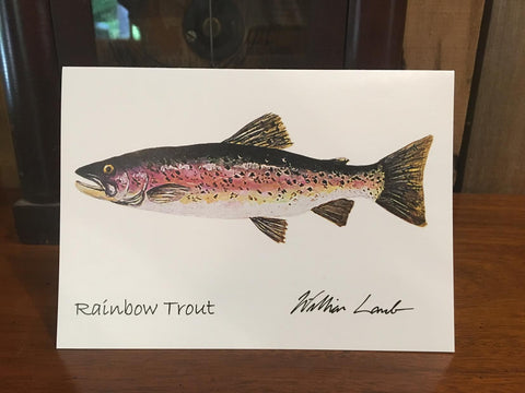 Notecards - Rainbow Trout