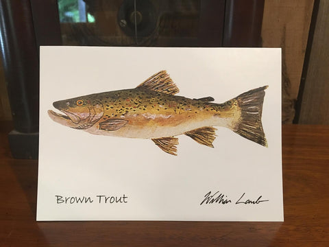 Notecards - Brown Trout