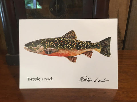 Notecards - Brook Trout