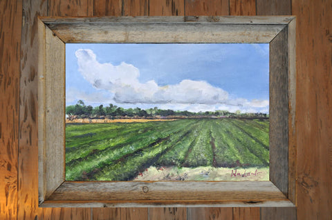 Original -  Peanut Field