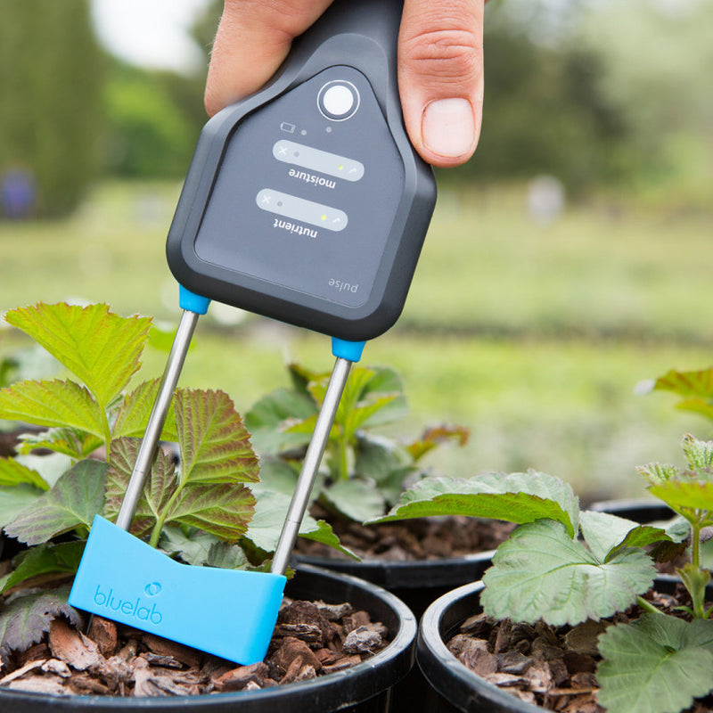 Bluelab Pulse Multimedia Conductivity/MC Meter - Grow Power Hydroponics