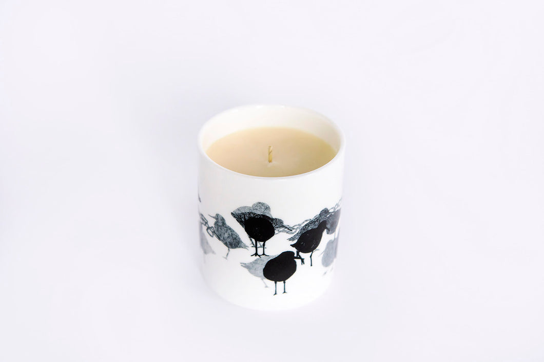 CANDLE: REDSHANK