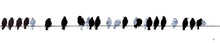 Load image into Gallery viewer, PAINTING: starlings on a wire 200x50cm