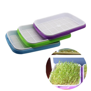 Deluxe Sprouting Tray for Kitchen OR Garden