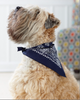 Embellish Custom Embroidered Pet Bandana | Personalized