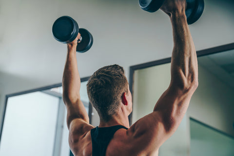 Train your Chest Back Muscles with Dumbbells