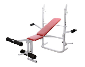 Lifeline 308A Fitness Bench