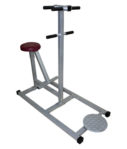 Lifeline Double Twister For Home/Gym Use