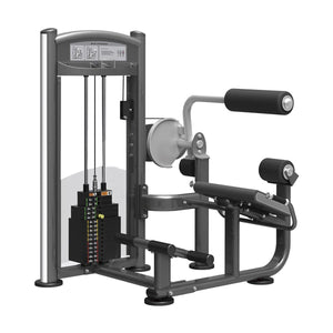 Viva Fitness IT 9332 BACK EXTENSION COMMERCIAL GYM MACHINE