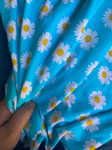 Blue Daisy Swim