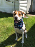 Made in the USA Stars Red, White, Blue Bandana - FunDogBandanas