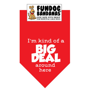 Wholesale 10 Pack - I'm Kind of a Big Deal around Here Bandana - Assorted Colors - FunDogBandanas