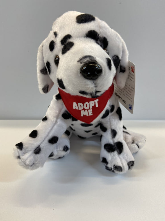 My Rescue Dog - Dalmation 8