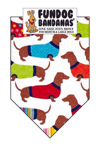 Dachshunds Wearing Sweaters - Limited Edition