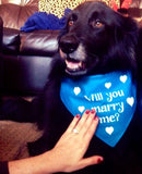 Will You Marry Me? Bandana - FunDogBandanas