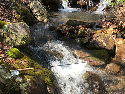 Mountain Trout Streams Fly Fishing Report - April 2, 2020