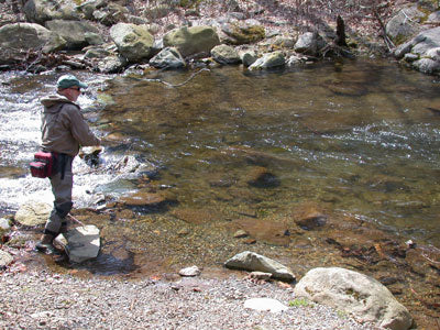 Mountain Trout Streams Fly Fishing Report - June 14, 2018