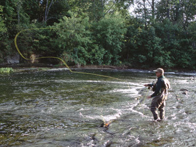 Stocked Trout Streams Fly Fishing Report - May 29, 2018