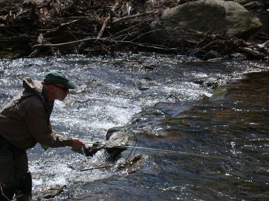 Mountain Trout Streams Fly Fishing Report- March 21, 2017