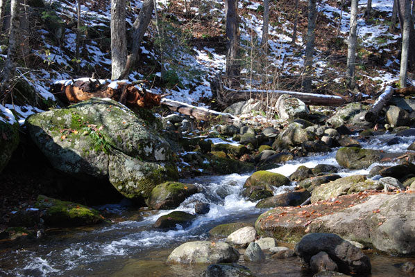 Mountain Trout Streams Fly Fishing Report- January 15, 2018