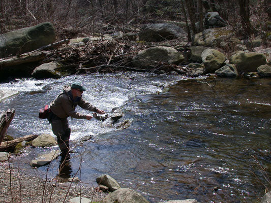 Mountain Trout Streams Fly Fishing Report- April 10, 2018