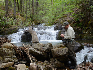 Mountain Trout Streams Fly Fishing Report - May 21, 2020