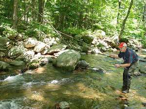Mountain Trout Streams Fly Fishing Report - July 23, 2020