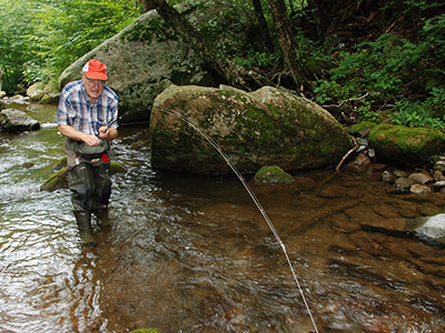 Mountain Trout Streams Fly Fishing Report - June 11, 2020