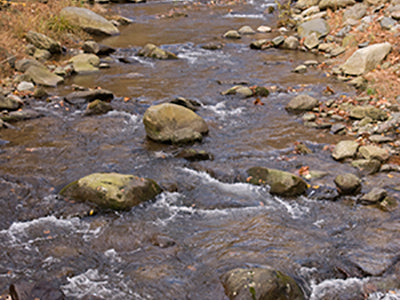 Mountain Trout Streams Fly Fishing Report - January 15, 2020