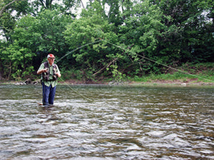 Stocked Trout Streams Fly Fishing Report - June 18, 2020