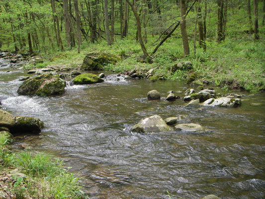 UPDATED Large Stocked Trout Streams Fly Fishing Report -July 31, 2017