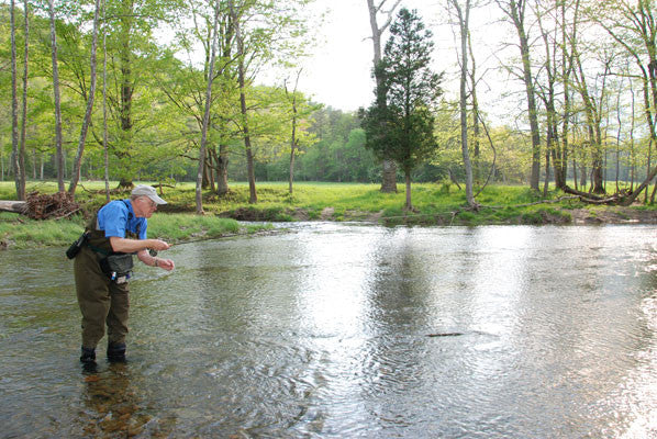 Delayed Harvest and Stocked Trout Streams Fly Fishing Report- March 28, 2017