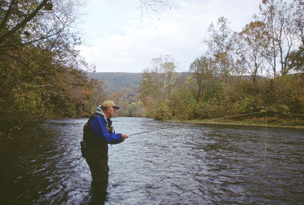 Delayed Harvest and Stocked Trout Streams Fly Fishing Report- Ocotber 16, 2017
