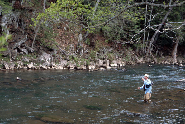 Delayed Harvest And Large Stocked Trout Streams Fly