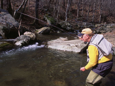 Mountain Trout Streams Fly Fishing Report-May 15, 2018