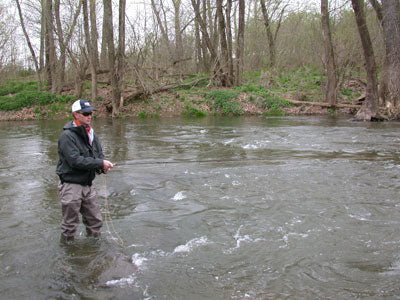 Smallmouth Bass Streams Fly Fishing Report - March 27, 2019