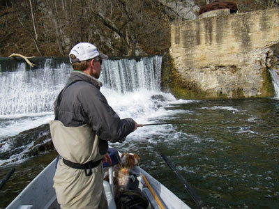 Smallmouth Bass Streams Fly Fishing Report - November 7, 2019