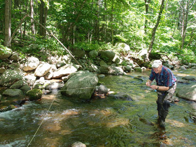 Mountain Trout Streams Fly Fishing Report - July 6, 2019