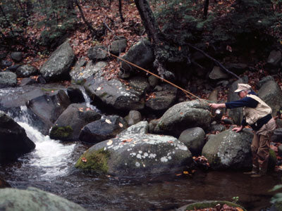 Mountain Trout Streams Fly Fishing Report - April 11, 2019