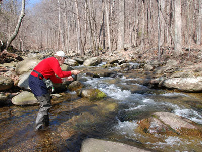 Mountain Trout Streams Fly Fishing Report - April 20, 2019