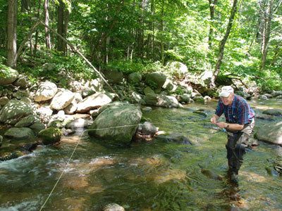 Mountain Trout Stream Fly Fishing Report - June 13, 2019