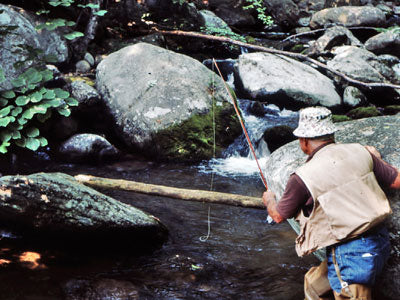Mountain Trout Streams Fly Fishing Report - June 27, 2019