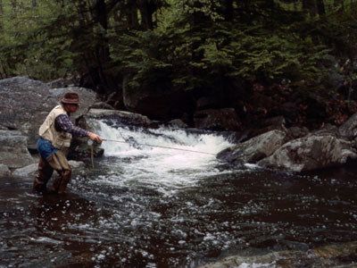 Stocked Trout Streams Fly Fishing Report - April 25, 2019