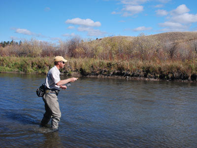 Stocked Trout Streams Fly Fishing Report - August 22, 2019